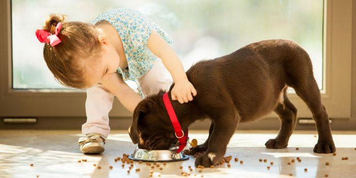 Cele mai adorabile animale de companie pentru copii