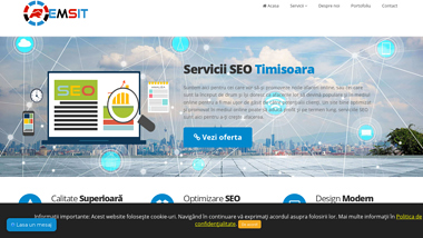Web Design Timișoara - Creare Website - Remsit