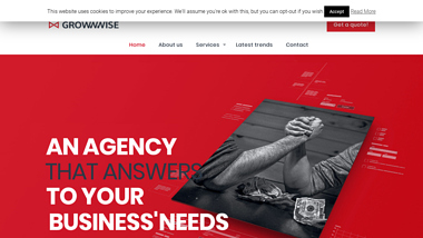 Digital Marketing Agency Grow Wise