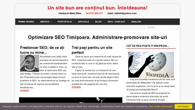 SEO Timisoara, optimizare site, editare continut